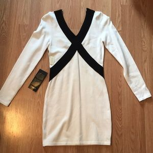 Bebe Bodycon mini sweater dress